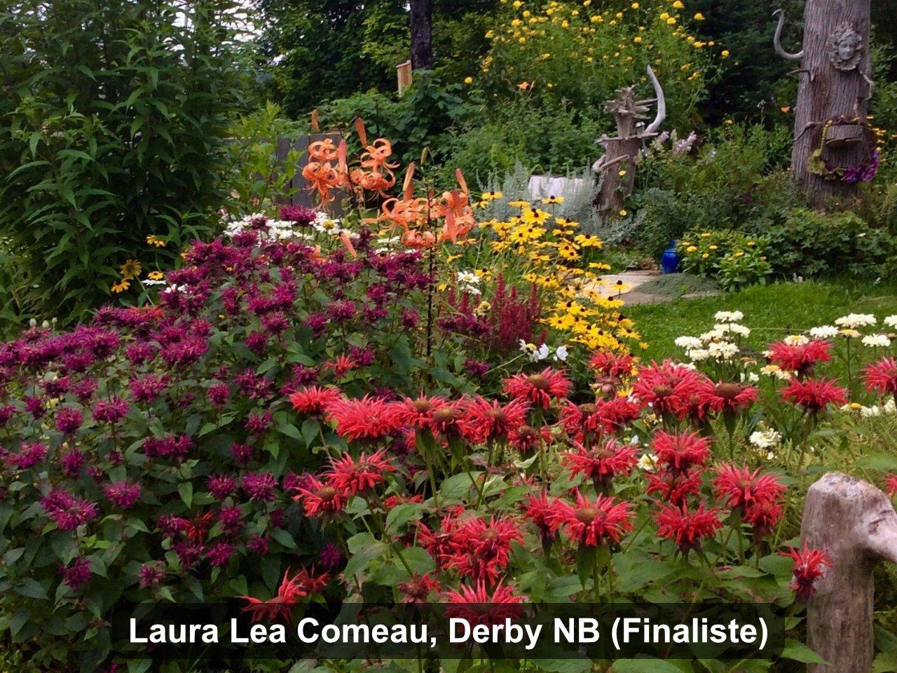 Finaliste - Laura Lea Comeau, Derby NB
